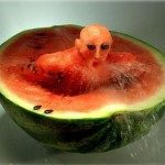 Watermelon Swimmer